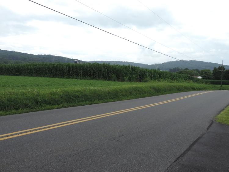 Looking toward land Jacob Oberholtzer once owned. (c) Melanie Carlin 2014