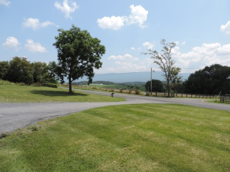 This is the view of Samuel's land as seen from the front of St. Mary's Pine Lutheran Church looking towards the Eastern portion of his property.