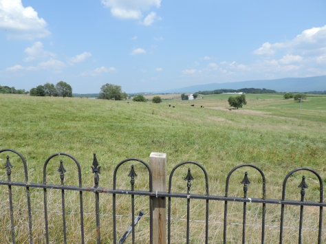 This is a view of the land from the cemetery to the East. It is possibly where the original homestead could have been.