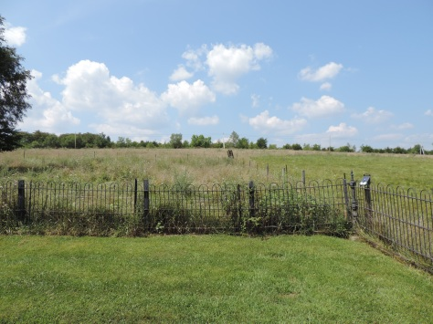 This is the view of Samuel's land looking towards St. Mary's Pine Lutheran Church where the cemetery is located.