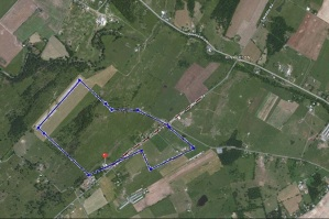 This is the outline of Samuel Overholtzer's land superimposed over the Google Map of St. Mary's Pine Lutheran Church.